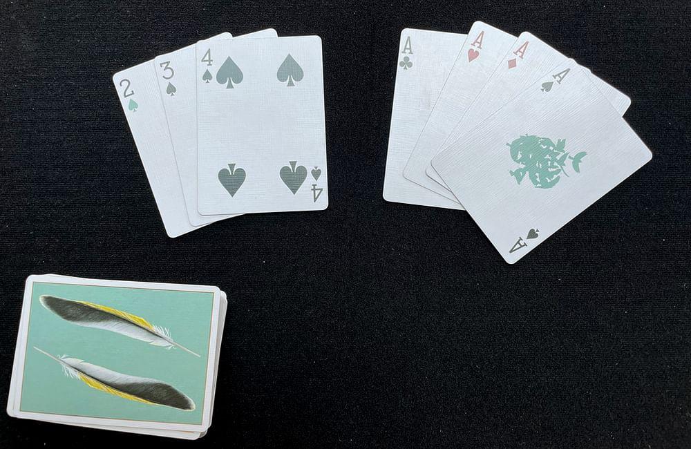 Winning hand in Rummy