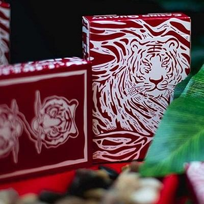 The Hidden King Red Luxury Edition Playi…