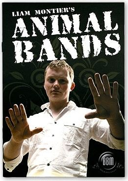 Animal Bands - magic