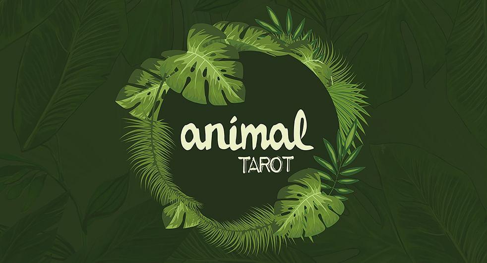 Animal Tarot  - magic