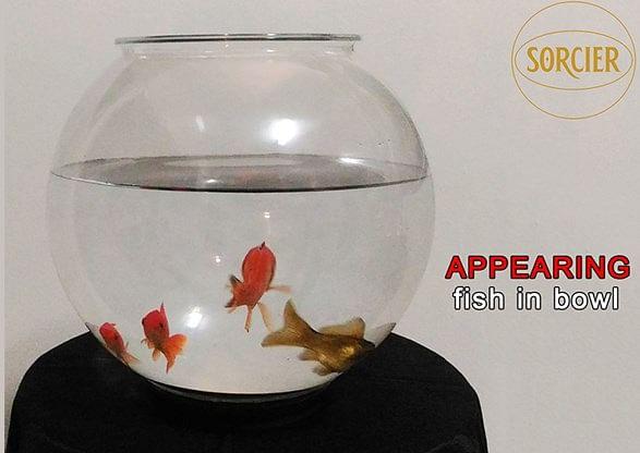 Appearing Fish in Bowl - magic