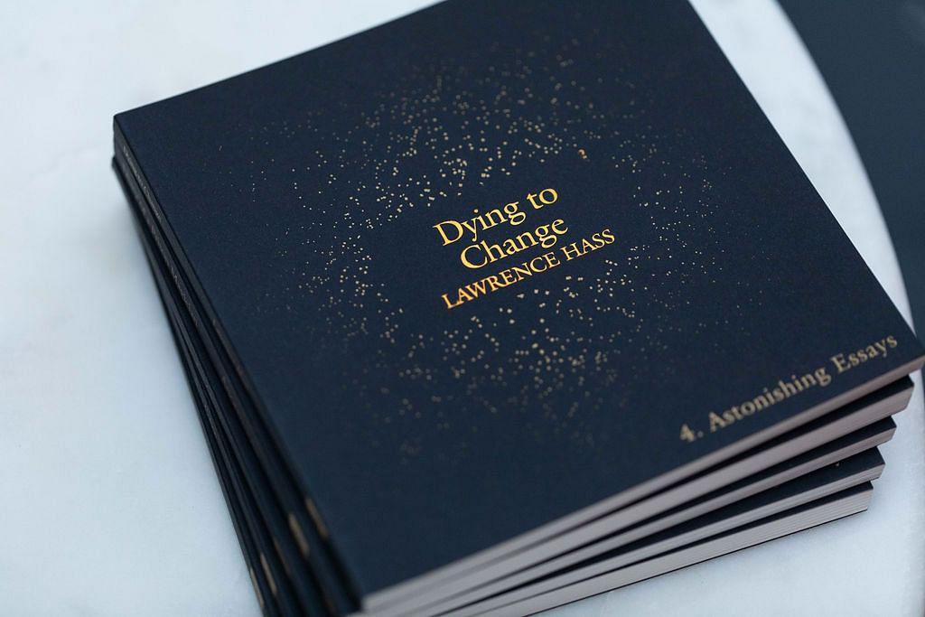 Astonishing Essays - Lawrence Hass - magic