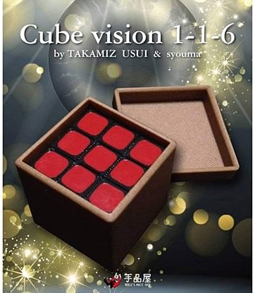 Cube Vision 1-1-6