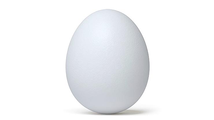 Deluxe Latex Egg-Tissue to Egg Routine - magic