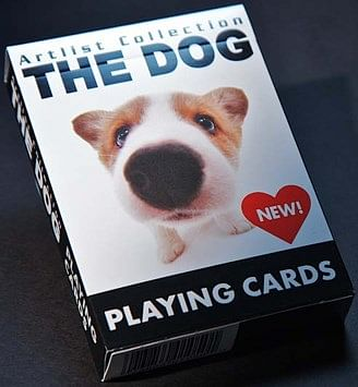 Dogs Playing Cards - magic