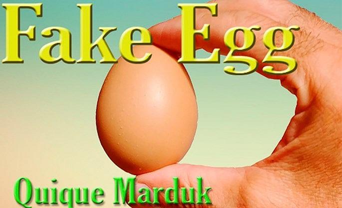Fake Egg (Brown) - magic