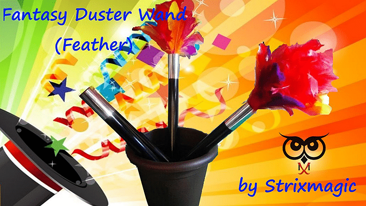 Fantasy Duster Wand - magic