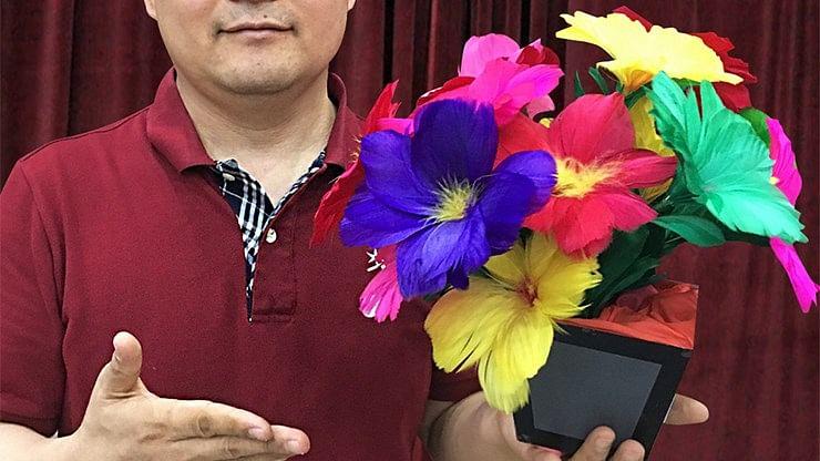 Flower Pot to Blendo