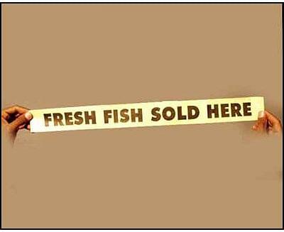 Fresh Fish Sold Here - magic