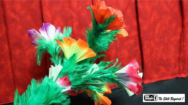 Giant Feather Fantasy