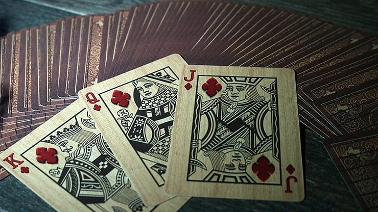 Bicycle Open Season Playing Cards