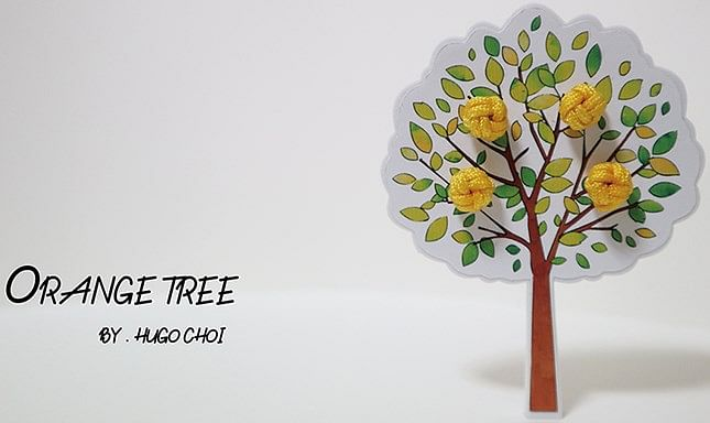 Orange Tree - magic