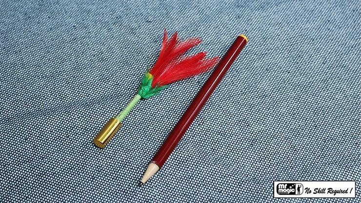 Pencil to Flower - magic
