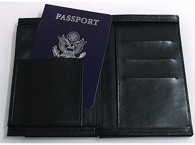 Pickpocket Passport