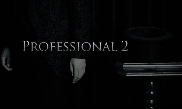Professional 2 - magic