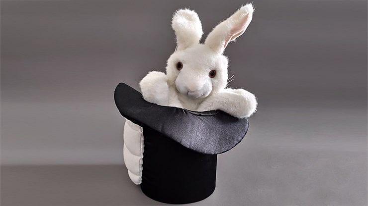Rabbit In Hat - magic
