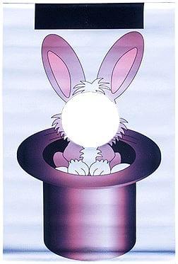 Rabbit Wand - magic