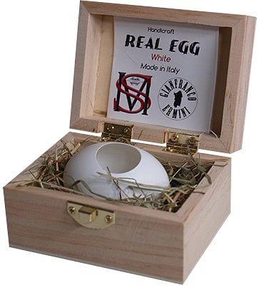 Real Egg - magic