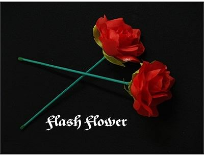 Red Flash Flower  - - magic