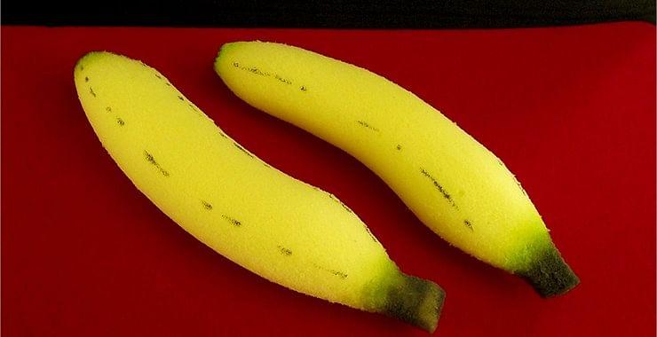 Sponge Bananas - magic
