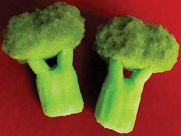 Sponge Broccoli - magic