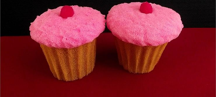 Sponge Cupcake (2 pieces) - magic