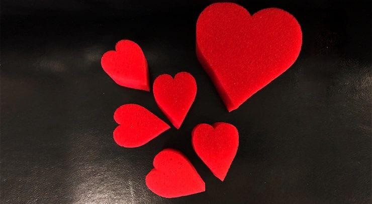 Sponge Heart Set