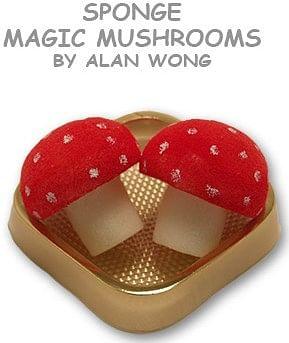 Sponge Mushrooms - magic