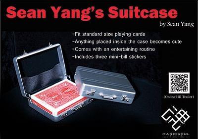Suitcase - magic