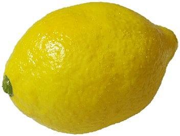 Super Real Latex Lemon - magic