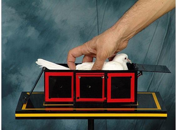 Surprising Dove Box - magic