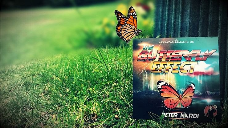 The Butterfly Effect - magic