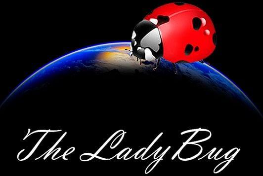 The Ladybug - magic