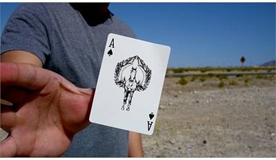 Titan Playing Cards