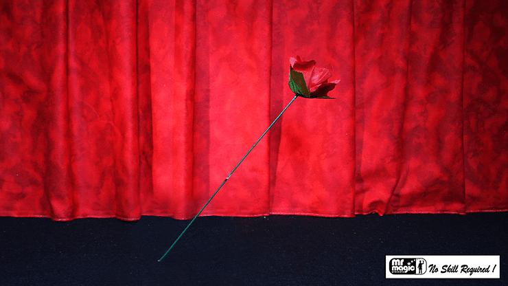 Torch to Rose - magic