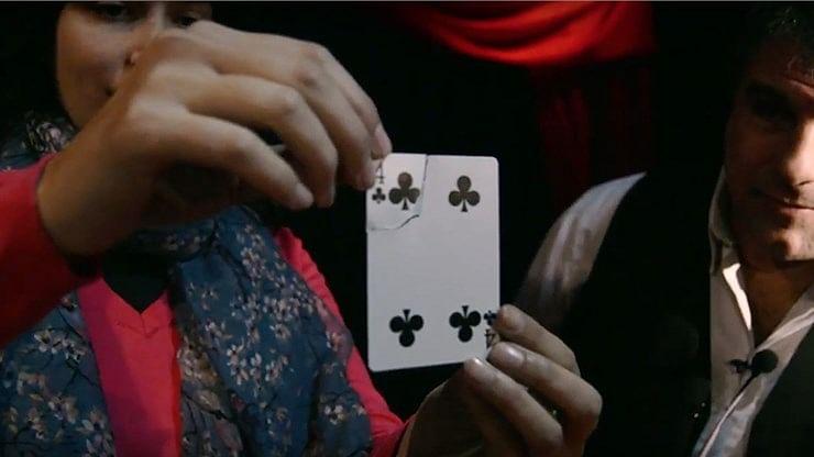 Torn Card Evolution