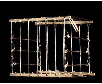 Vanishing Bird Cage - magic