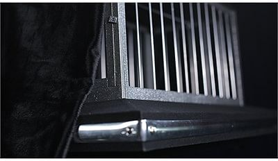 Vanishing Dove Cage