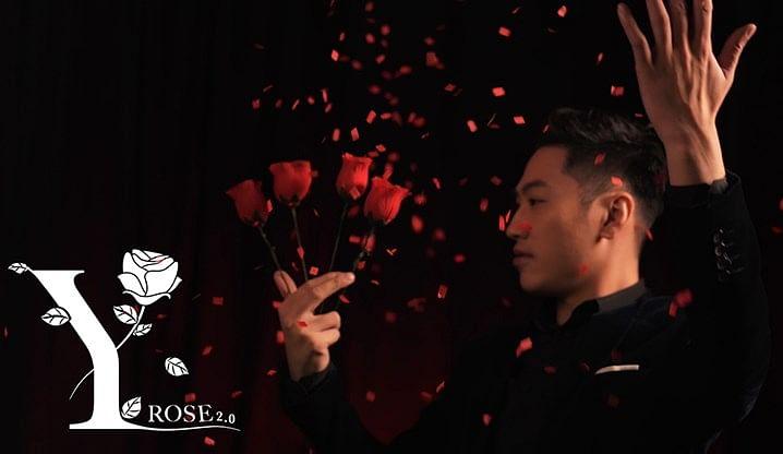 Y-Rose 2.0 - magic