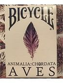 Bicycle AVES Uncaged Playing Cards Deck of cards