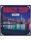 Crazy Trip Magic download (video)