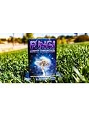 Fungi Mystic Mushrooms Mycological Playing Cards Deck of cards