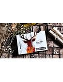 Lost Deer Jungle Edition Playing Cards Deck of cards