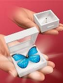 Magic Butterfly Trick