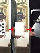 Missing Card  Trick