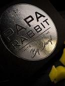 Papa Rabbit Hits the Big Time DVD
