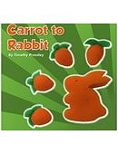 Sponge Carrot to Rabbit Trick