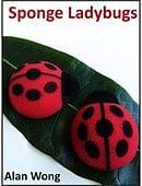 Sponge Lady Bugs Accessory