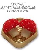 Sponge Mushrooms