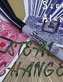 STEAL CHANGE Magic download (video)